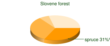 Slovene forests